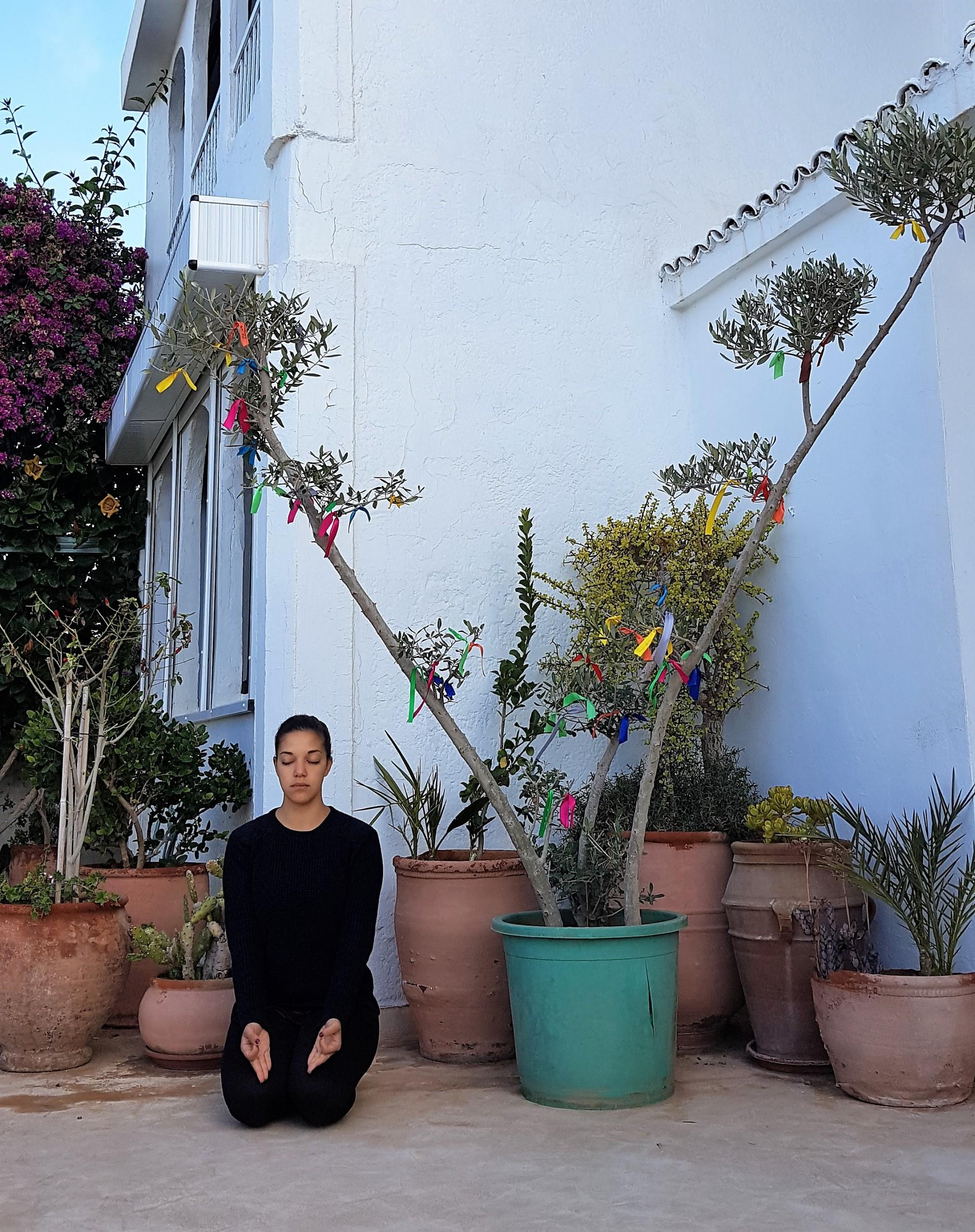 Wishing Tree - Surf Maroc - Villa Mandala