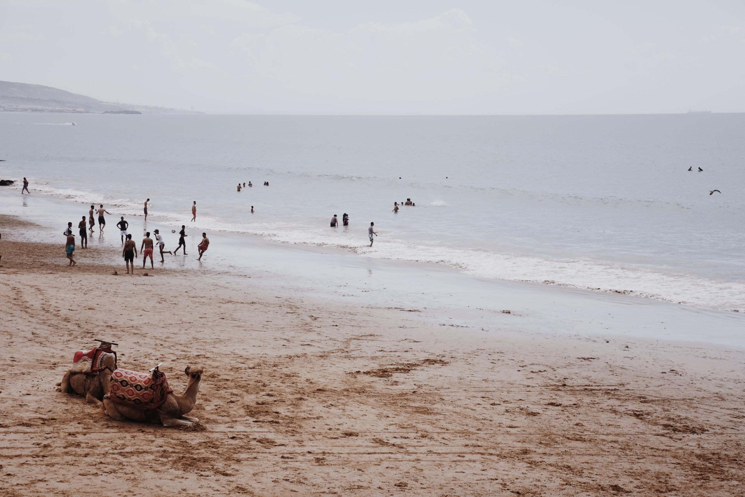 surf maroc lifestyle beach